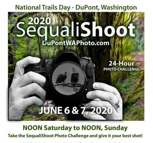 SequaliShoot2020-color-WEB-AD